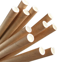Eco-Straw Paper Regular Straw Kraft Brown Pkt of 40